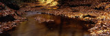 Autumn Leaves in Water, England, United Kingdom Photographic Print by  Panoramic Images