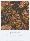 Cone Harvest Posters by Boyce Watt