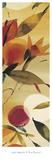 Fiesta Primaveral I Prints by Lola Abellan