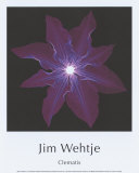 Clematis Prints by Jim Wehtje
