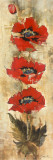 Strand of Poppies I Print by Elizabeth Jardine