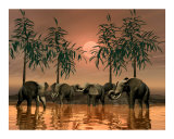 Jungle Scene of Elephants Photographic Print by John Junek