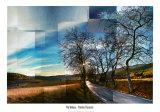 Penedes Vineyards Prints by Pep Ventosa