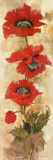Strand of Poppies II Print by Elizabeth Jardine