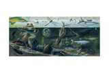 An Illustration of Freshwater Pond Life Giclee Print by Ned M. Seidler
