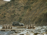 Porters Transport a Car on Long Poles across a Stream Photographic Print by Volkmar K. Wentzel