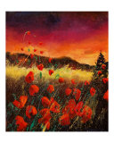 Red Poppies 56 Giclee Print by Pol Ledent