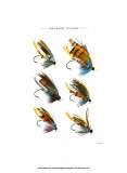 Salmon Flies II Posters