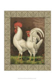 Roosters VI Prints by  Cassell's Poultry Book