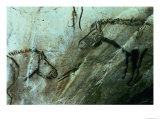 Horses, Rock Paintings in the Black Room, Magdalenian Giclee Print by Paleolithic 