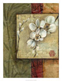 Asian Orchids I Giclee Print by Ethan Harper