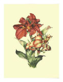 Lush Floral I Premium Giclee Print by Ernest-adolphe Guys