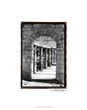 Passageway Premium Giclee Print by Laura Denardo