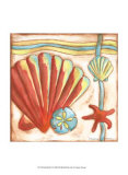 Pop Shells II Prints by Nancy Slocum