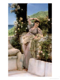 Rose of All Roses Giclee Print by Sir Lawrence Alma-Tadema