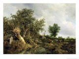 Landscape with a Hut, 1646 Giclee Print by Jacob Isaaksz. Or Isaacksz. Van Ruisdael