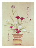 Orchids Giclee Print
