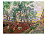 The Garden of St. Paul's Hospital at St. Remy, 1889 Giclee Print by Vincent van Gogh