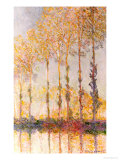 Poplars on the Banks of the Epte, 1891 Premium Giclee Print by Claude Monet