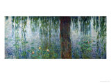 Waterlilies: Morning with Weeping Willows, Detail of the Left Section, 1915-26 Giclee Print by Claude Monet