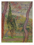 The Park at the Saint-Paul Hospital, c.1889 Giclee Print by Vincent van Gogh