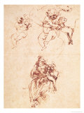 Study for the Virgin and Child with a Cat Giclee Print by  Leonardo da Vinci