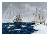 The Whaling, 19th Century Giclee Print by Gilbert Pajot
