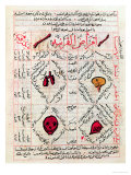 "Page from the ""Canon of Medicine"" by Avicenna Giclee Print"