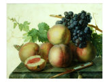 Still Life with Peaches and Grapes on Marble Giclee Print by Jan Frans van Dael