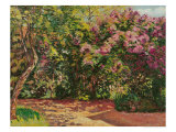 Lilac, the Artist's Garden Giclee Print by Armand Guillaumin