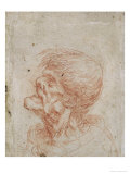 Caricature Head Study of an Old Man, circa 1500-05 Giclee Print by  Leonardo da Vinci