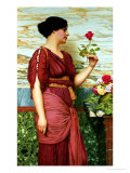 A Red, Red Rose Giclee Print by John William Godward