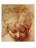 Study of a Head Giclee Print by Parmigianino