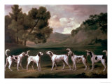 Foxhounds in a Landscape, 1762 Giclee Print by George Stubbs