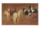 Study of Five Horses Giclee Print by Adam Frans van der Meulen