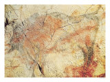 Bison, from the Caves at Altamira, circa 15000 BC Giclee Print
