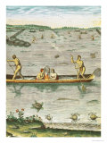 "How the Indians Catch Their Fish, from ""Admiranda Narratio..."" Giclee Print by John White"