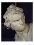 David, Detail of the Head, 1623-23 Giclee Print by Giovanni Lorenzo Bernini