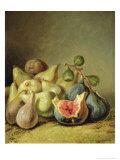 Fruit Still Life Giclee Print by Johann Heinrich Wilhelm Tischbein