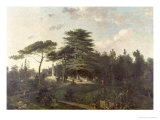 The Cedar of Lebanon in the Jardin des Plantes Giclee Print by Jean Pierre Louis L.. Houel