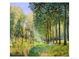 The Rest by the Stream. Edge of the Wood, 1872 Premium Giclee Print by Alfred Sisley
