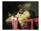 A Still Life with Grapes, Plums, Figs and a Melon on a Partly Draped Stone Ledge, 1653 Gicl&#233;e-Druck von Willem Van Aelst