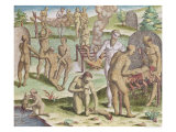 "Scene of Cannibalism, from ""Brevis Narratio"" 1564 Giclee Print by Jacques Le Moyne"
