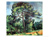 The Large Pine, circa 1889 Reproduction procédé giclée par Paul Cézanne