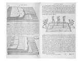 "Stages and Methods of Laying Floors, from ""Della Architettura"", Published 1590 Giclee Print by Giovanni Antonio Rusconi"