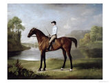 "The Marquess of Rockingham's ""Scrub"", with John Singleton Up, 1762 Giclee Print by George Stubbs"