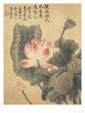 Peonías Lámina giclée por  Yun Shouping