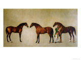 Whistlejacket and Two Other Stallions with Simon Cobb, the Groom, 1762 Giclee Print by George Stubbs