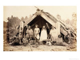 Maori Family, New Zealand, circa 1880s Giclee Print by  New Zealander Photographer