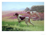 Pointers in a Landscape Giclee Print by Harrington Bird
